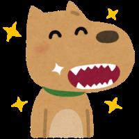 犬 歯磨き 日野